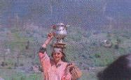 A Kashmiri woman carrying a samavar of tea to the fields.