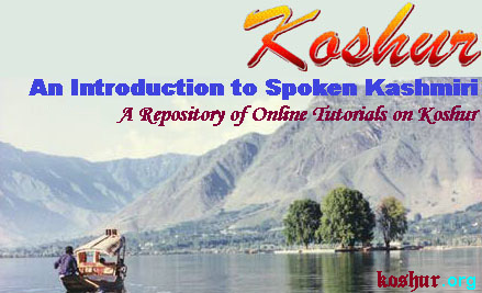 KOA Language Section:An Introduction to Spoken Kashmiri Logo