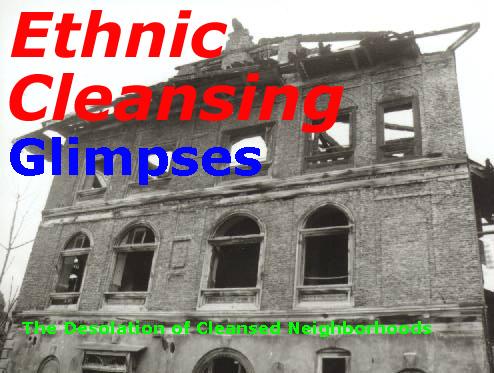 The Desolation of Cleansed Neighborhoods